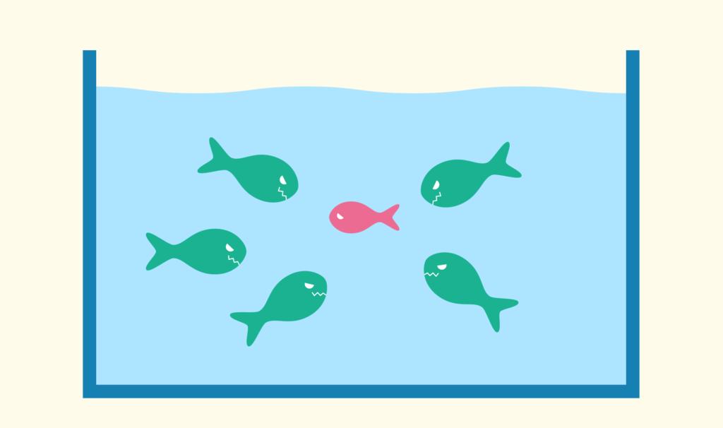 海水魚飼育の失敗例-1 いじめ事件