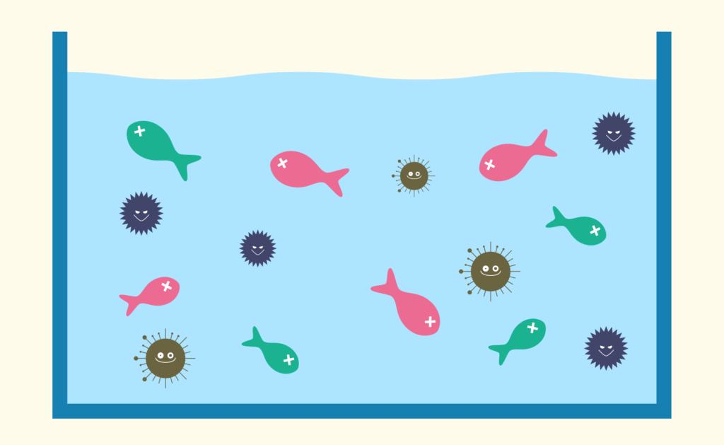海水魚水槽の病気は水槽崩壊につながる!