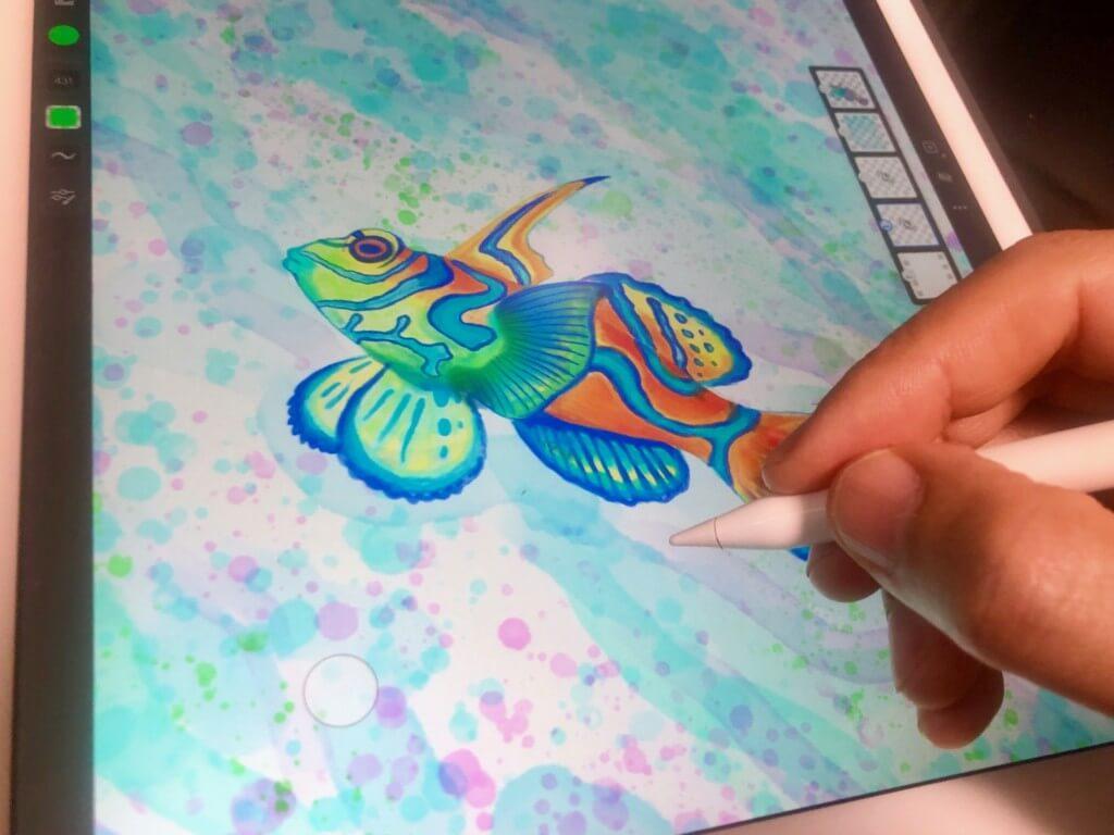 AdobeFrescoでニシキテグリのイラストを描いてみた-着色2