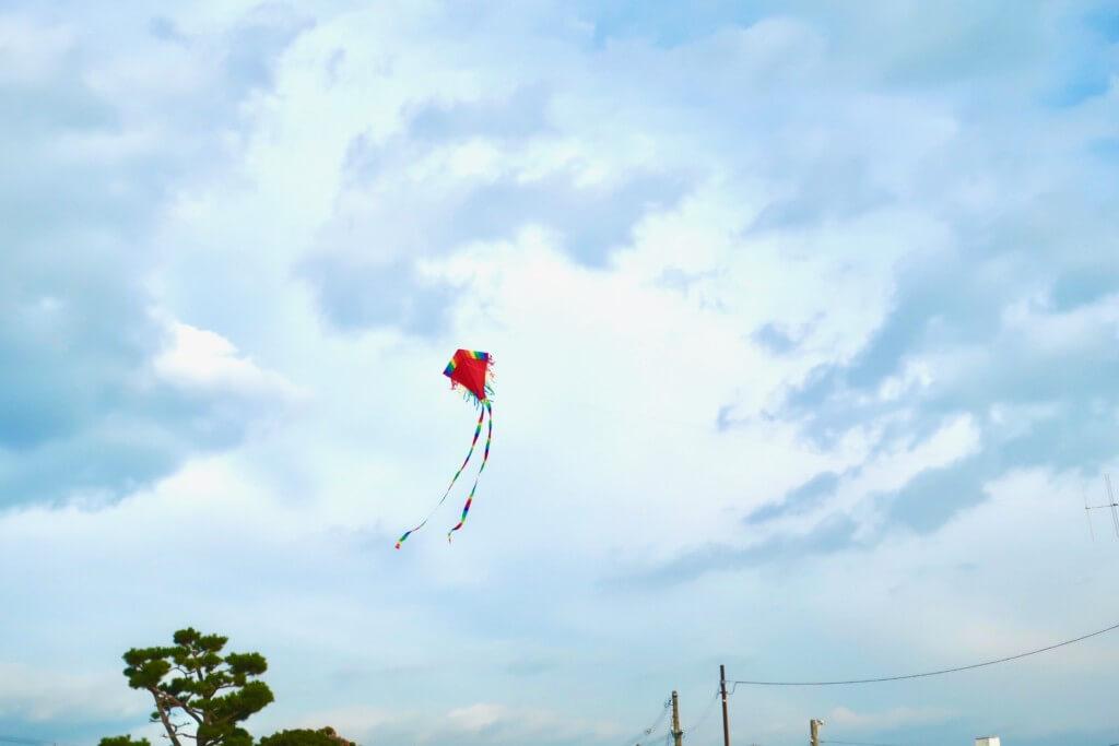 令和最初の正月はボードゲームと凧上げで開幕!今年もよろしくお願い致します