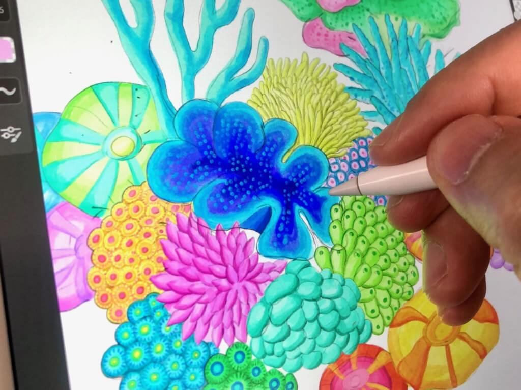 令和2年最初の作品をリリース!カラフル珊瑚のイラスト