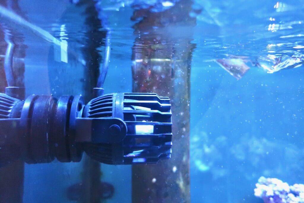 水槽の水流ポンプをZOOXファンタスティックウエーブに買い替え!